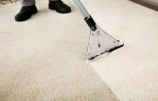 carpet cleaning and house cleaning we are insured