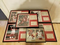 Red Wings Player Stats Plaques  Kalamazoo, 49001