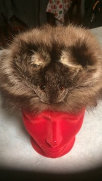 Real racoon fur hat with face and tail size small Montréal, H4N 1Y8