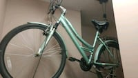 green and white hardtail mountain bike Parkhill, N0M 2K0