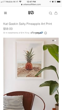 Urban Outfitters Pineapple Artwork Carlsbad, 92008