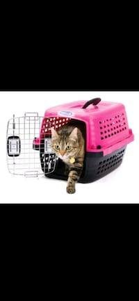 ISO: Cat or Small Dog Carrier