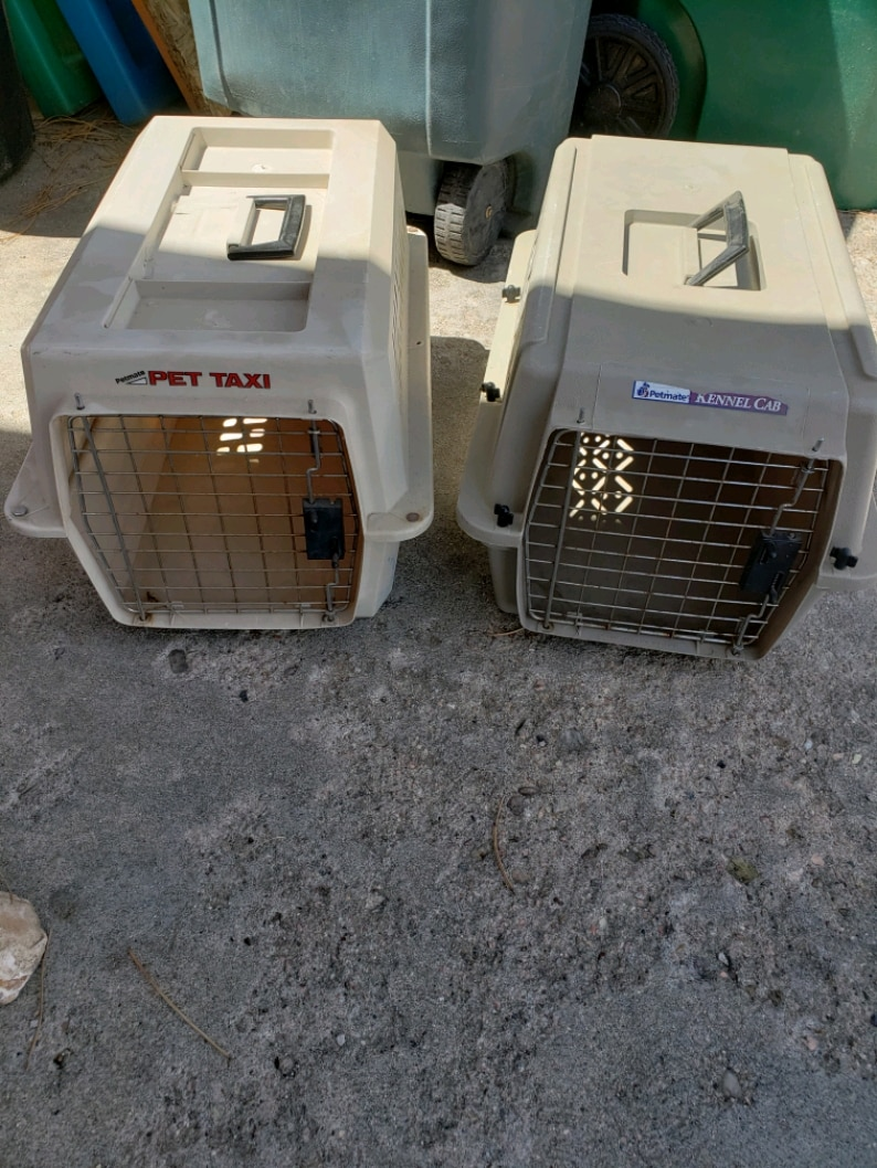 Photo Pet Taxi & Petmate Kennel Small dog / cat kennel