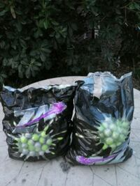 2 bags of paintballs