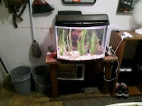 Fully complete fish tank San Antonio