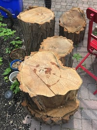 Free wood stumps Toronto, M6G 2A6