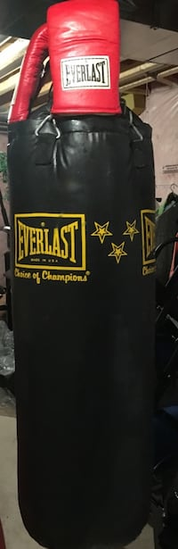 Boxing bag and gloves - Everlast punching bag Whitchurch-Stouffville, L4A 0Z1