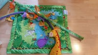 baby's green, orange, blue, and purple animal themed activity gym