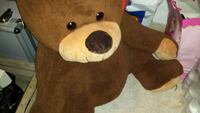 brown plush teddy bear Ponderano, 13875