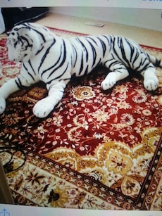 white tiger plush toy