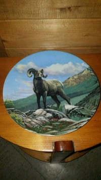 """""""The Bighorn Sheep"""" Decorative Plate  Whitby, L1N 6W5"""