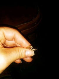 gold and diamond ring with box Hyattsville, 20784