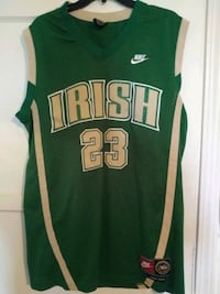 green and white Boston Celtics 33 jersey Los Angeles, 91601