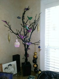 4 foot rubber tree Mobile