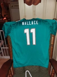 NFL Miami Dolphins Jersey Garland, 75040