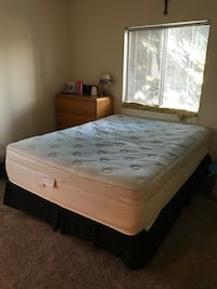 Queen Size Bed with Box Spring and Adjustable Metal Frame  Green, 44685