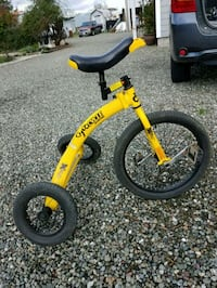Unicycle with training wheels