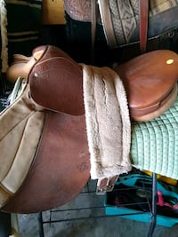 Saddle Rochester, 98579