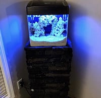 Complete 8 gallon Biocube with stand, everything you see & more Edmonton, T6M 0A9