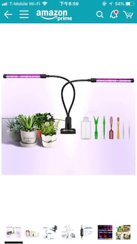 Plant grow light 格伦伯尼, 21061