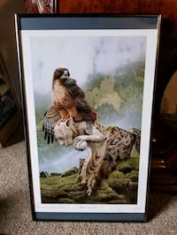 "Beautiful 21""-12"" Falcon print Victoria, V9A 6A6"
