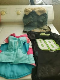 3 small dog outfits New Port Richey, 34652