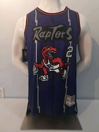 Toronto Raptors Retro Hardwood Classic player vers