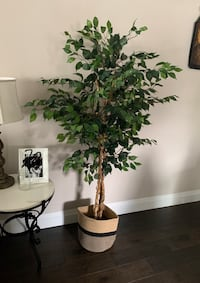 Nearly Natural Ficus Tree 5-feet