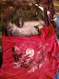 Wolf Graphic T Shirts. Must Go