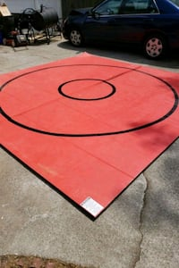red and black area rug Snellville, 30078