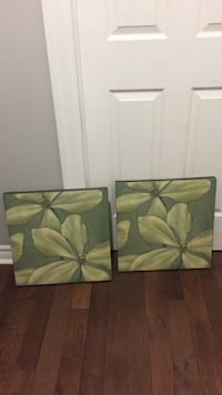 two white petaled flower paintings