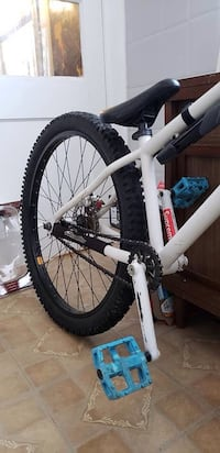 bike -selling my norco dirt jumper as I no longer have the time to use it. It is a norco 125 frame, not to sure of the year. There are a few upgrades on the bike. Bearclaw grips, claims ecosketetal hydraulic brakes front and back, odyssey pivotal seat and null, N0E 1Y0