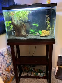 Fish Tank with stand & fish