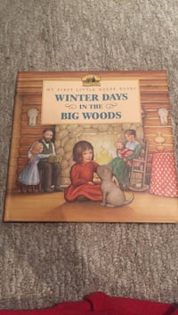 Winter Days in the Big Woods poster