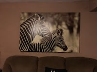 black and white zebra print wall decor Manteca, 95337
