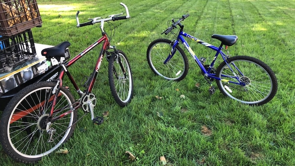 Two blue and red bicycles