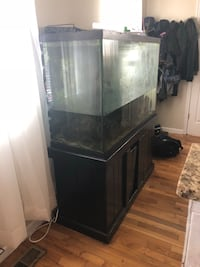 Black wooden framed glass fish tank everything included nothing wrong with tank just want it gone  Washington, 20018