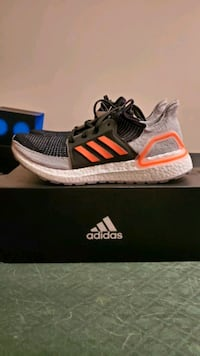 Ultra Boost 19 Silver Spring, 20902