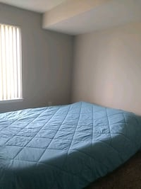 ROOM For Rent Studio 1BA Aspen Hill