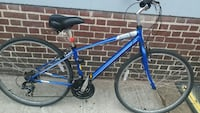 blue and black mountain bike