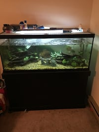 black frame fish tank and hutch