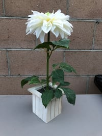 New - Pretty Off White Artificial Flower in a shabby chic wooden base - Approx 1 1/2 feet tall - $18 Long Beach, 90805