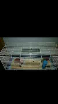 Guinea pig cage and extras Romulus