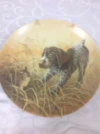 Fritz's folly - the German shorthaired pointer Innisfil, L0L