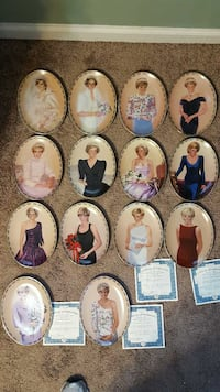 Complete Princess Diana Plate Collection Hagerstown