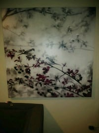 white and black floral painting Arvada, 80003