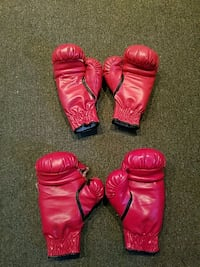 Everlast Boxong Gloves sizes 12 and 16 Havertown, 19083