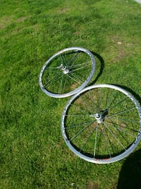 Campagnolo road Ten speed rims wheels racing compotition Italian