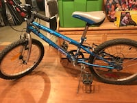 "20"" 5 speed mountain bike Langley, V2Y"
