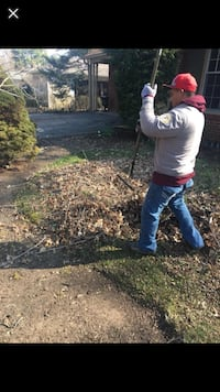 Fall clean up Indianapolis